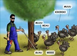 chistes-el-granjero