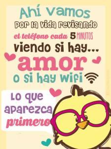 amor-wifi